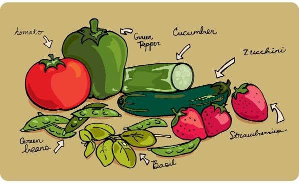 vegetable from my garden