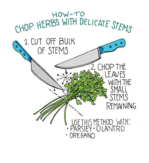 delicate stems