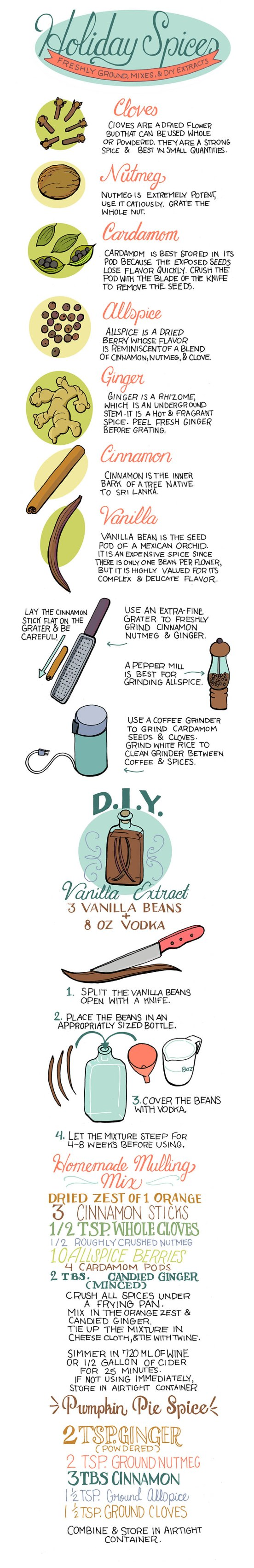 Spice Guide